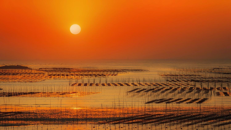 霞浦——北岐滩涂风光