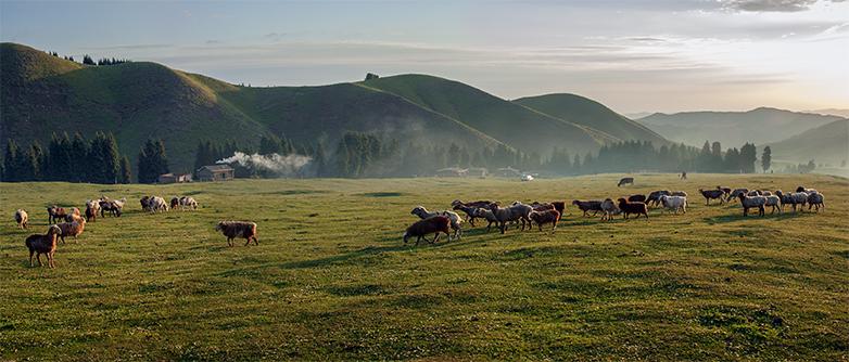 阿什里乡的早晨